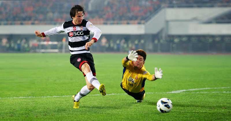 Soccer Striker and Goalie